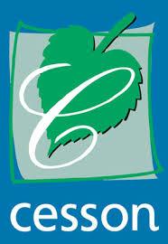 Cesson